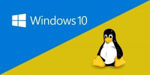 http://winlinux.ir/wp-content/uploads/2017/07/win-linux-dual-boot-300x150.jpg